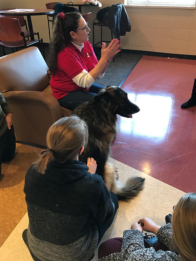 harnett county animal shelter nc